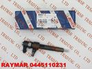 BOSCH Genuine common rail injector 0445110231 for Chevrolet 93342272, MWM Diesel 940704640034, VW 2P0 130 201